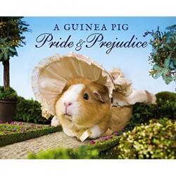 guinea-pig-pride-and-prejudice